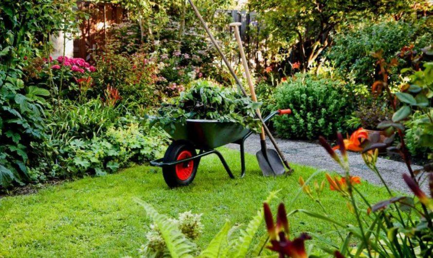 Как подготовить свой сад к весне?
